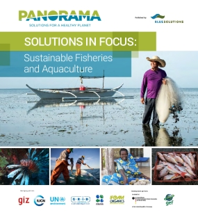 Solutions in Focus: Sustainable Fisheries and Aquaculture